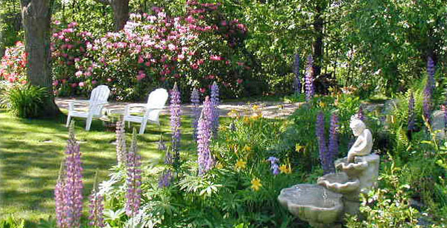 Southern Maine Coast B&B Gardens